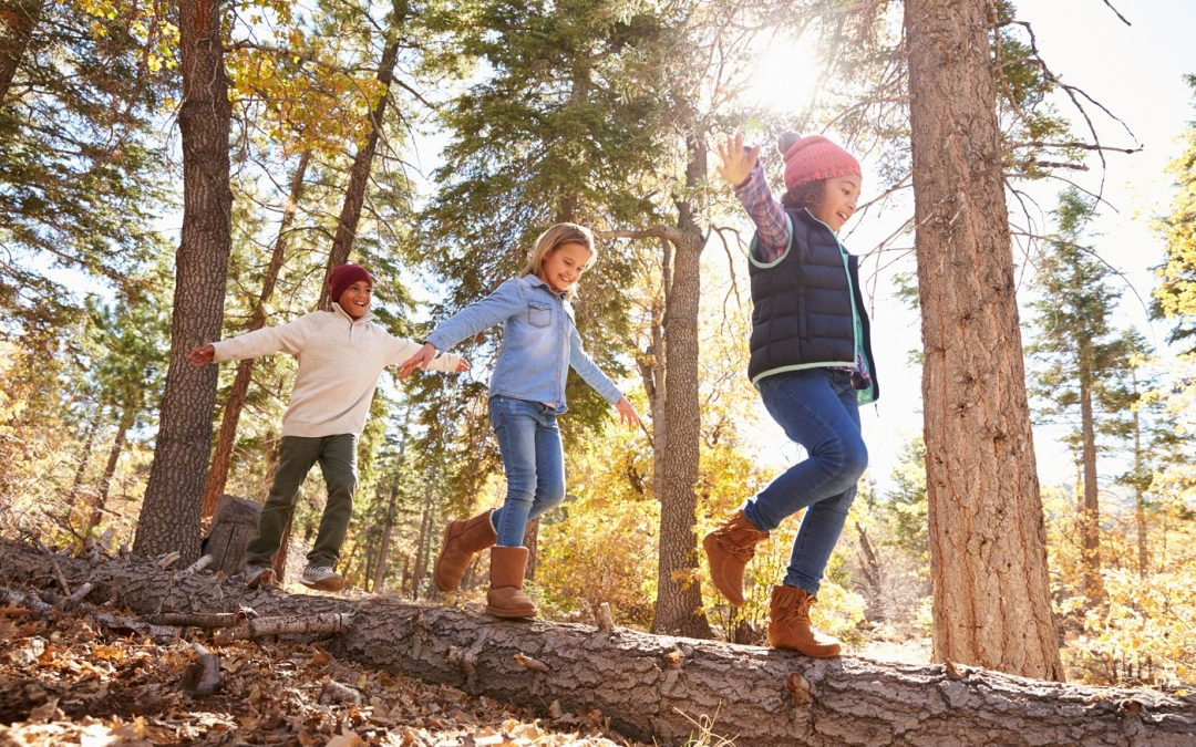 7 Awesome Hiking Games For Kids