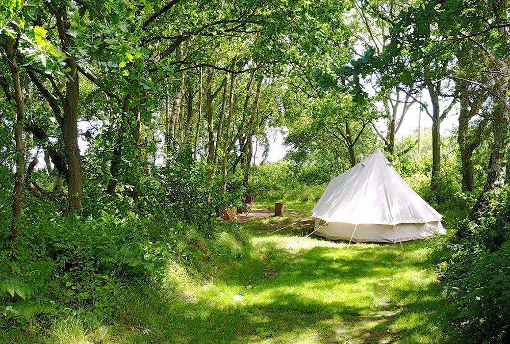 5 Woodland Campsites to Try in UK