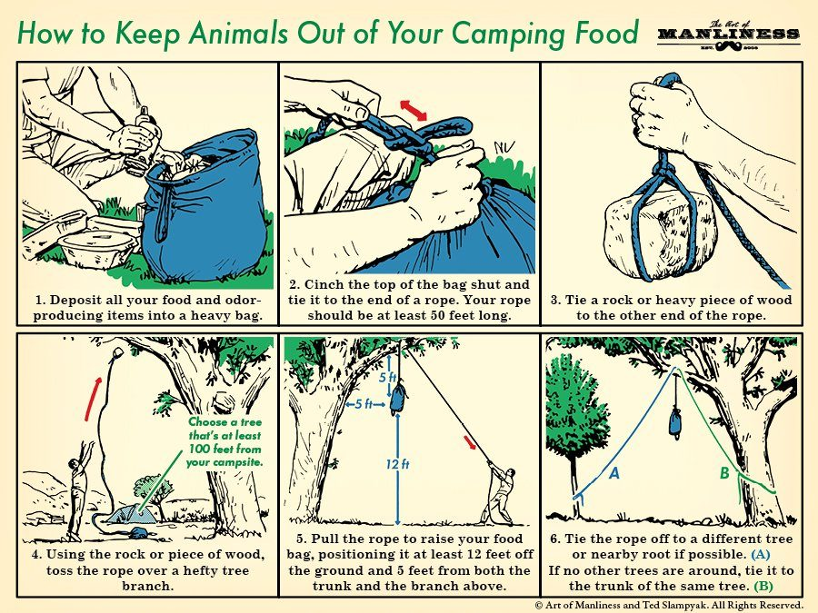 How to Keep Animals Out of Your Camping Food | The Art of Manliness